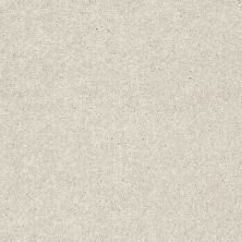 Shaw Floors Value Collections Nantucket Summer 12′ Taupe 55105_E9903