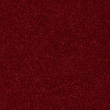 Shaw Floors Value Collections Nantucket Summer 12′ Crimson 55803_E9903