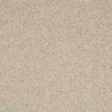 Shaw Floors Value Collections Main Stay 12′ Ecru 00103_E9906