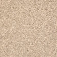 Shaw Floors Value Collections Boston It Is Ivory 00101_E9907