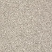Shaw Floors Value Collections Boston It Is Alpaca 00500_E9907