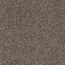 Shaw Floors Value Collections Boston It Is Mountain Rock 00502_E9907