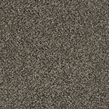 Shaw Floors Value Collections Accents For Sure 12′ Timber Wolf 00104_E9908