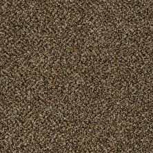 Shaw Floors Value Collections Accents For Sure 12′ Sandpiper 00201_E9908