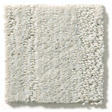 Shaw Floors Value Collections Jimmies Cloudy Gray 00500_E9910