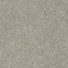 Shaw Floors Value Collections Frappe II London Fog 00501_E9913