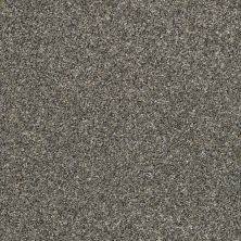 Shaw Floors Value Collections Frappe II Granite Dust 00511_E9913