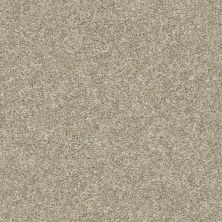 Shaw Floors Value Collections Frappe II Latte 00700_E9913