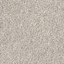 Shaw Floors Value Collections Marks The Spot II Quartz 00100_E9915
