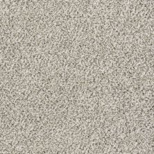 Shaw Floors Value Collections Marks The Spot II Smoky Gray 00500_E9915