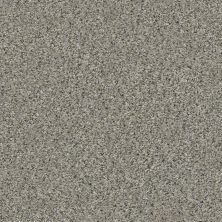 Shaw Floors Value Collections Marks The Spot II Rhino 00501_E9915
