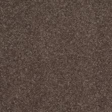 Shaw Floors Value Collections Main Stay 15′ Briar Patch 00703_E9921