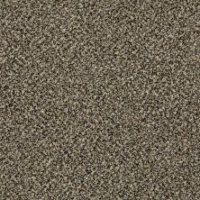 Shaw Floors Value Collections Accents For Sure 15′ Muffin Top 00200_E9923