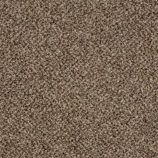 Shaw Floors Value Collections Accents For Sure 15′ Worn Path 00700_E9923