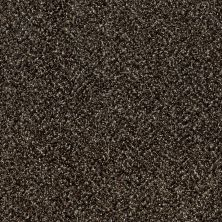 Shaw Floors Value Collections Accents For Sure 15′ River Rock 00702_E9923