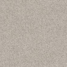 Shaw Floors Cabana Bay Solid Weathered 00522_E9954