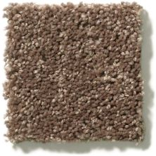 Shaw Floors Cabana Bay Solid Cattail 00702_E9954