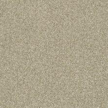 Shaw Floors Cabana Bay Tonal Wheat Field 00142_E9955