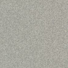 Shaw Floors Cabana Bay Tonal Fog 00540_E9955