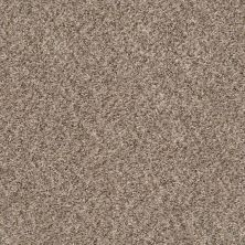 Shaw Floors Cabana Life (b) Mesa 00152_E9959