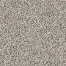 Shaw Floors Cabana Life (b) Stone 00550_E9959