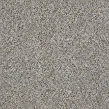 Shaw Floors Cabana Life (b) Sierra Mist 00555_E9959