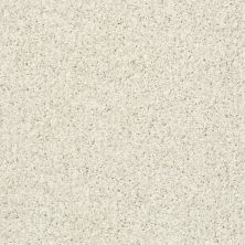 Shaw Floors Cool Flair Bufftone 00113_E9964