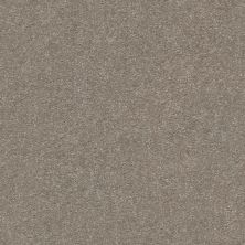Shaw Floors Attainable Smooth Taupe 700S_E9965