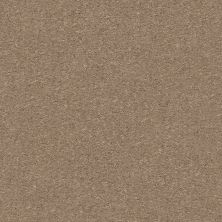 Shaw Floors Attainable Cork 701S_E9965