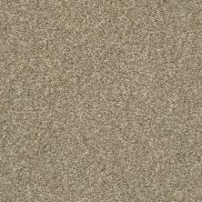 Shaw Floors Simply The Best It's All Right Natural Taupe 00113_E9966