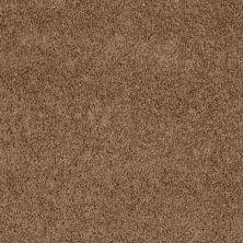 Shaw Floors SFA Weatherford Shiitake 00108_EA009