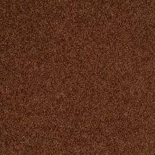 Shaw Floors SFA Weatherford Bronzetone 00706_EA009