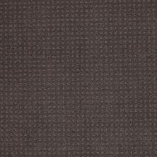 Shaw Floors SFA In Savannah Steel Beam 00502_EA024