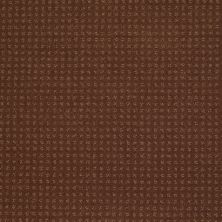 Shaw Floors SFA In Savannah Mocha Chip 00706_EA024