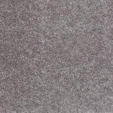 Shaw Floors SFA Bridgewood Silhouette 00500_EA040