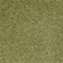 Shaw Floors SFA Ocean Pines 12′ Spring Valley 00300_EA041