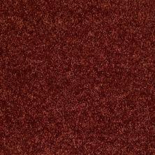 Shaw Floors SFA Ocean Pines 12′ Sienna 00600_EA041