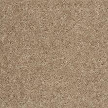 Shaw Floors SFA Drexel Hill I 15 Tassel 00107_EA051