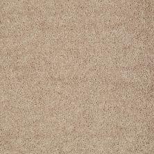 Shaw Floors SFA Drexel Hill I 12 Tassel 00107_EA053