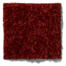 Shaw Floors SFA Drexel Hill I 12 Red Wine 00801_EA053
