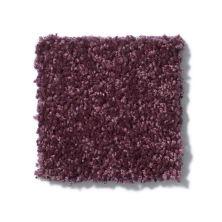 Shaw Floors SFA Drexel Hill I 12 Royal Purple 00902_EA053