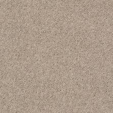 Shaw Floors SFA Drexel Hill II 12′ Bare Mineral 00105_EA054