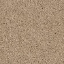 Shaw Floors SFA Drexel Hill II 12′ Tassel 00107_EA054