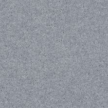 Shaw Floors SFA Drexel Hill II 12′ Dolphin 00541_EA054