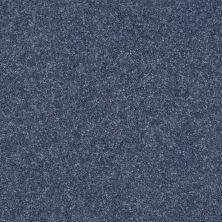 Shaw Floors SFA Drexel Hill II 12′ Steel 00544_EA054