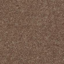 Shaw Floors SFA Drexel Hill II 12′ Granola 00701_EA054