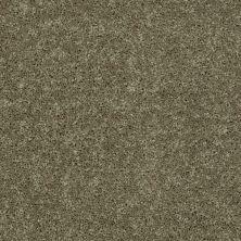 Shaw Floors SFA Drexel Hill III 12′ Aloe 00300_EA055