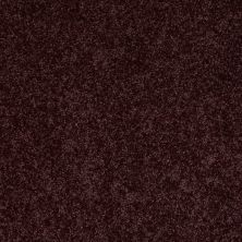Shaw Floors SFA Drexel Hill III 12′ Royal Purple 00902_EA055