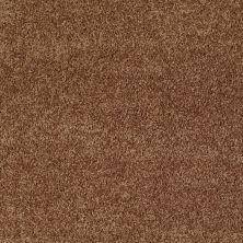 Shaw Floors SFA Drexel Hill III 15 Desert Sunrise 00721_EA056