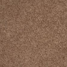 Shaw Floors Anso Colorwall Designer Twist Gold (s) Kodiak Bear 00710_EA090